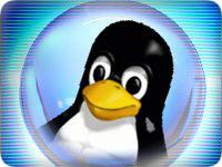 Linux 3.9 Kernel