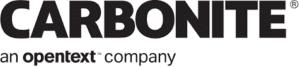 carbonite 300x67 - بهترین نرم افزار های بکاپ گیری از سرور در سال 2021